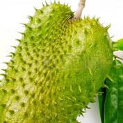Owoc Guanabany